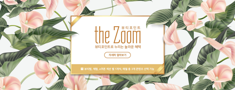 the Zoom 소개
